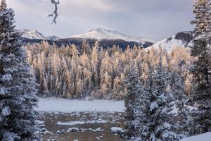 【新年再出发】冬日喀纳斯,梦中的冰雪童话世界