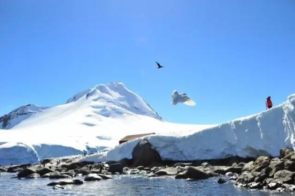 """最让人羡慕的旅行,莫过于晒出了""""定位在南极""""的朋友圈!"""