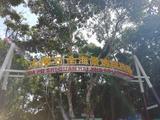 亚龙湾热带天堂森林公园