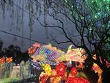 第25届自贡国际恐龙灯会