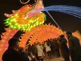 扬州枣林湾园博园夜游灯会
