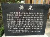 金凤凰温泉度假村