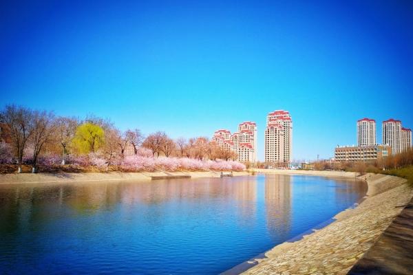 【我是旅行家】天津之春,赏花攻略