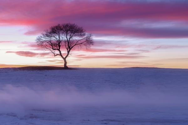 【与佳同行,自在游天下】三天二夜,给爱人一场雪乡旅行