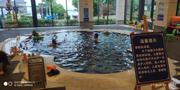 苏州2天1晚【乐玩同里·美食之旅】住同里湖度假村二期1晚+含双人自助早餐+双人自助晚餐带你体验亲子酒店界的海底捞+室内外儿童乐园&恒温泳池等