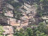 雅安碧峰峡自然风景区
