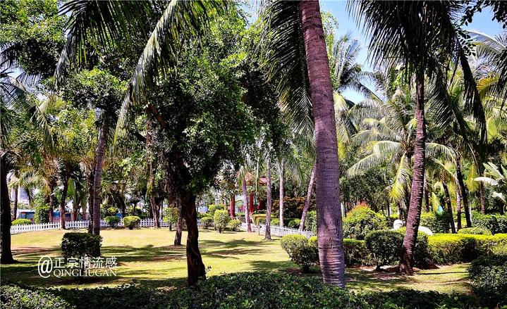 远离客流景区,在三亚一样可以享受天蓝海蓝美味飘香的度假时光