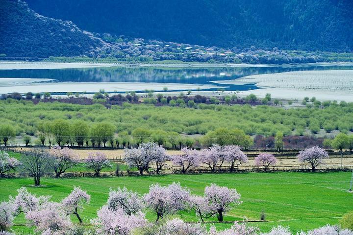 有人问我:在西藏有没有一些地方是非去不可的?我:……