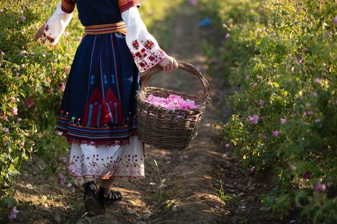 保加利亚玫瑰节之旅:在这里邂逅浪漫