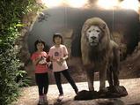 新加坡夜间动物园亲子票-1大1小