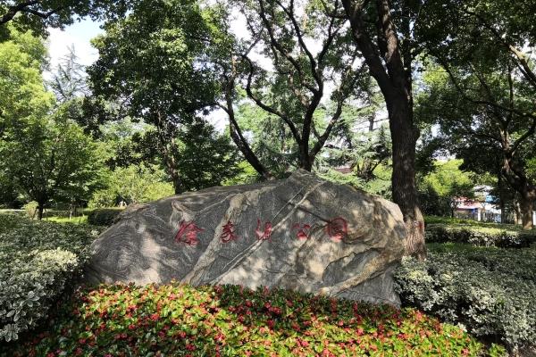 【上海微旅游】市中心商圈里,感受人与自然和谐相处的文化乐园
