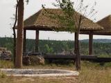 鄂尔多斯野生动物园