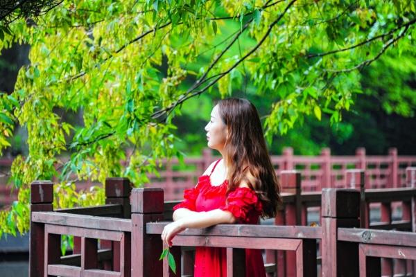 【我和祖国合影】拾一片秋日时光,携一缕午后暖阳,沉醉在白云湖的秋色里
