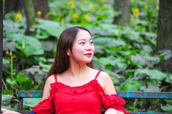 【我和祖国合影】河南千年古都的这片森林 藏着每个女孩子都心动的童话世界