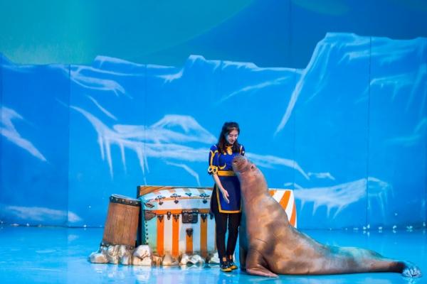 【我和祖国合影】二刷圣亚海洋世界,赴一场海洋的美妙奇缘