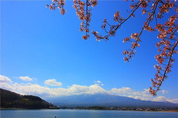 【晒游记赢日本九州之旅】跟着我的脚步一起去日本品美食、看美景、买买买!