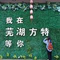 芜湖方特东方神画