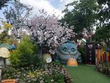 浦江郊野公园奇迹花园(AAAA)