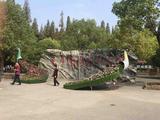 上海东平国家森林公园