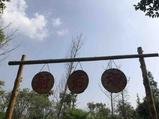 苏州江南农耕文化园-肥米粒萌宠乐园