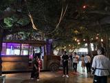杭州2天1晚【森林度假王国,专享特色木屋,玩转水乐园】杭州开元森泊度假酒店+雨林餐厅早餐+水乐园门票2张或幻想岛亲子票1张+玩芙罗拉室内花园