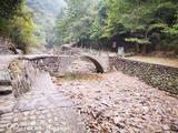 桐庐大奇山国家森林公园