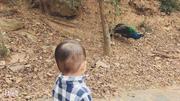 老山国家森林公园