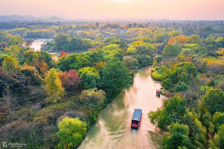 【年末去哪玩】秋日来西溪,倾听芦花开的声音