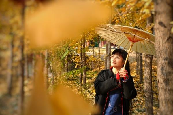 【年末去哪玩】一座千年道观里的银杏林,惊艳了这里的秋天