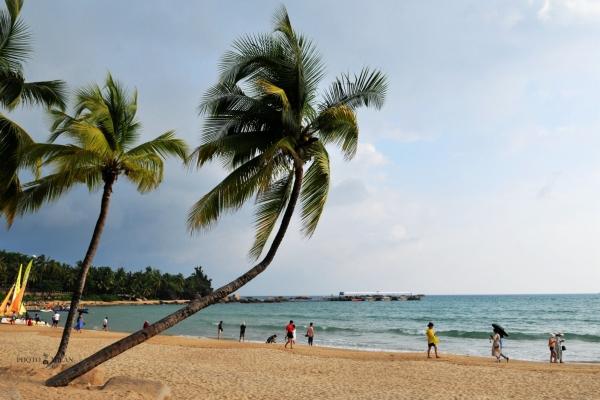 【年末去哪玩】三亚自由行,从天涯海角到大东海,让人心动的度假之旅!