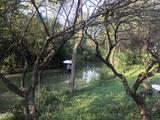 西溪国家湿地公园·周家村