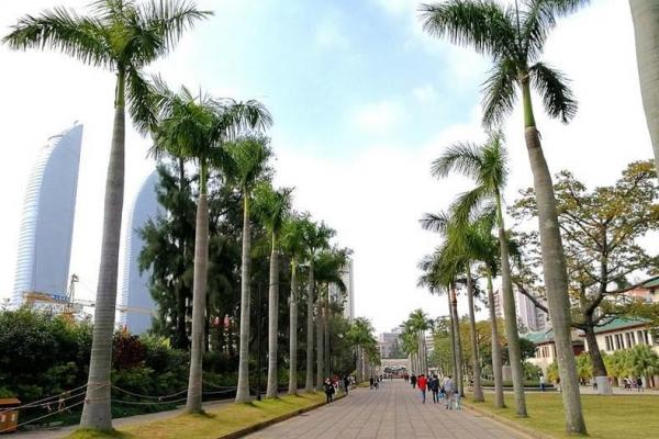 【年末去哪玩】厦门第一所华侨创办的大学:中国最美大学之一厦门大学