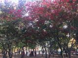 苏州天平山风景名胜区