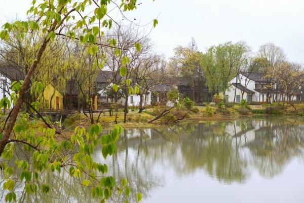 """【新年輕度假】杭州十里芳菲,隱于西溪深處的""""世外桃源"""""""