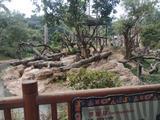 广州长隆野生动物世界特定日双人票