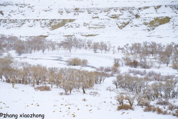 克拉瑪依的冬季是白色的
