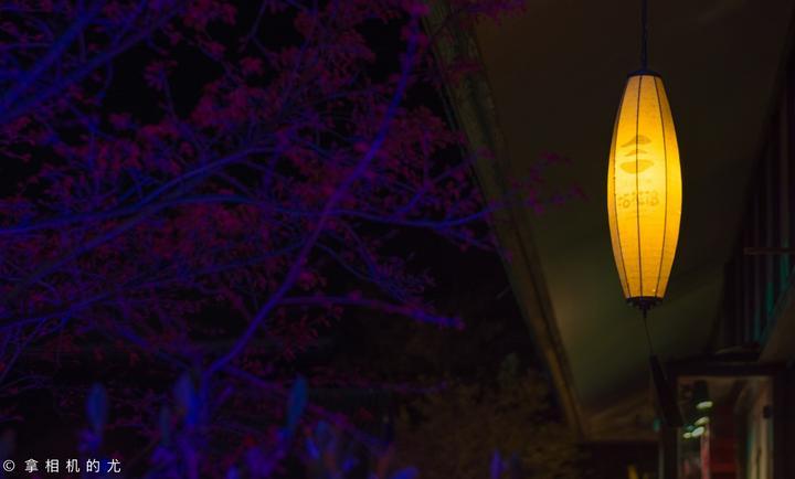 春日樱花不可负 无锡拈花湾的东方美学(含攻略)_无锡好玩吗,无锡怎么样,无锡旅游攻略,无锡自由行攻略