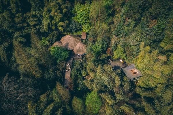 成都周边亲子游|带孩子回归自然,住进精灵的树屋里