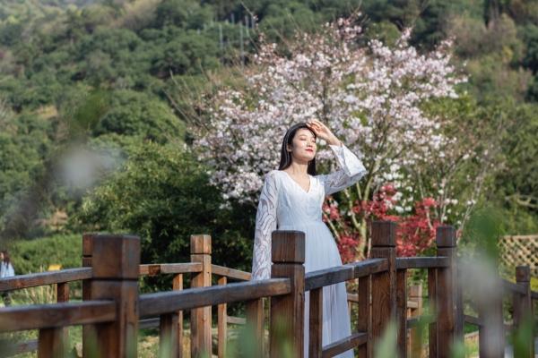正是春暖花开好时节,在拈花湾感受东方的禅意世界