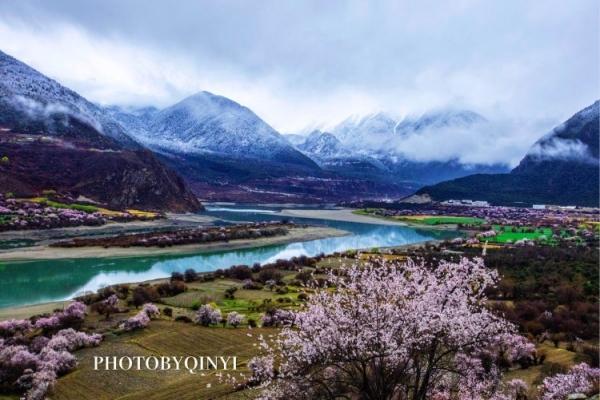 雪山之湄桃花有梦
