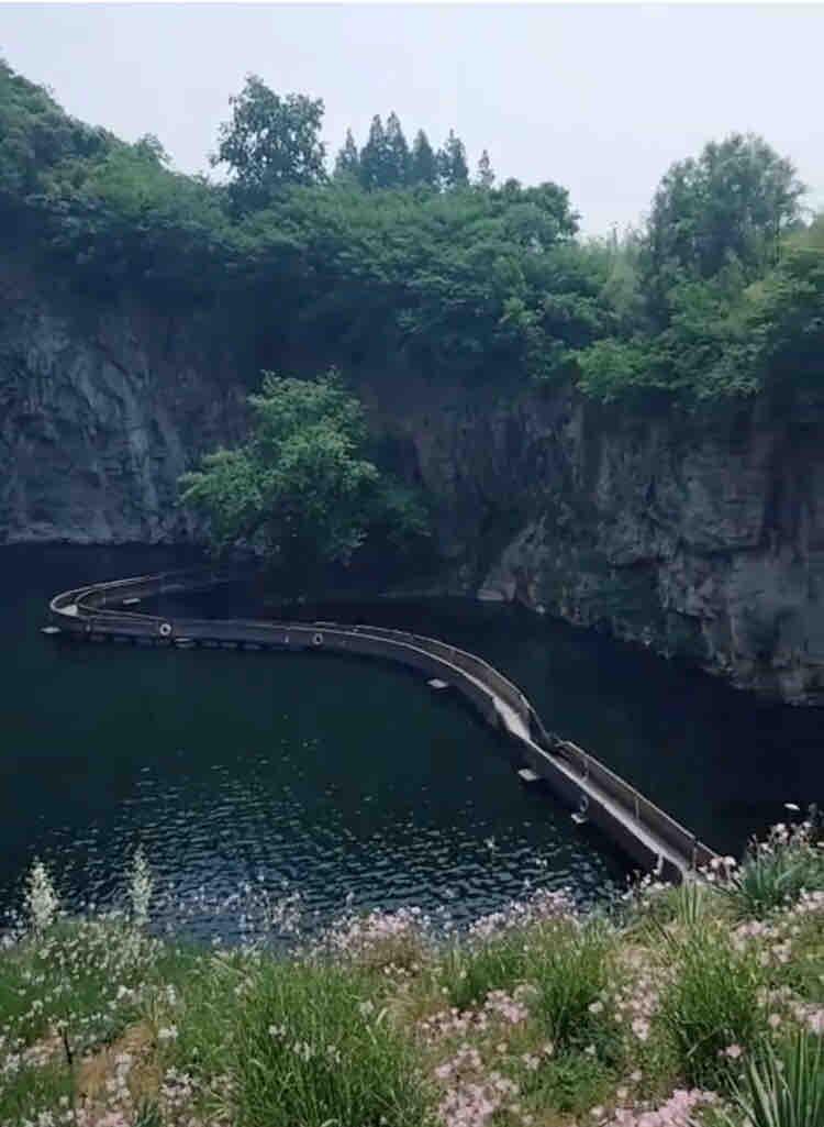 辰山植物园