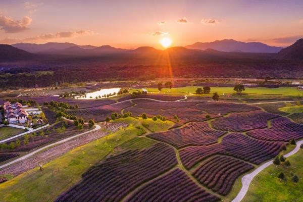 火山热气球、湿地划草排、马鞭草花海...腾冲网红景点打卡地图来袭!