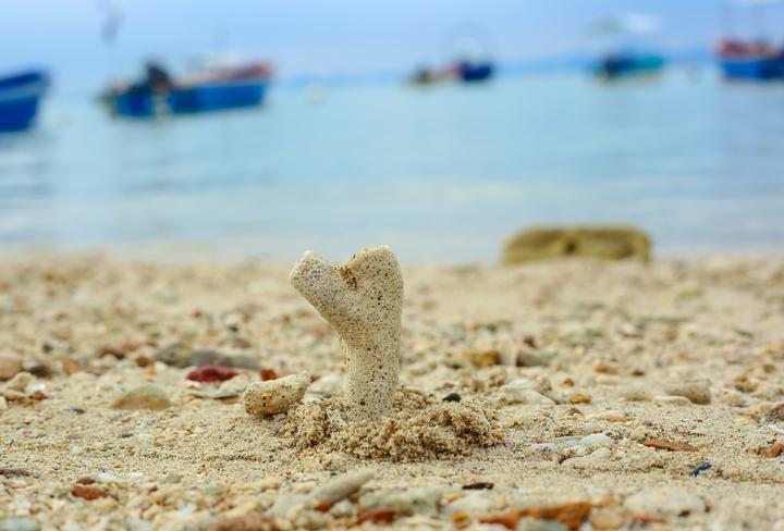 逃离三亚那些热门景点,这些人少景美的地方你知道吗_亚龙湾国家旅游度假区好玩吗,亚龙湾国家旅游度假区怎么样,亚龙湾国家旅游度假区旅游攻略,亚龙湾国家旅游度假区自由行攻略