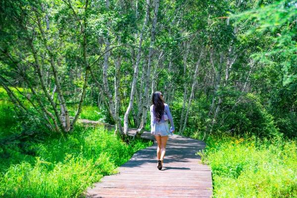 16°七彩森林|心动便是美,深情便是锦绣