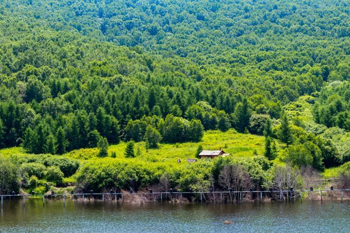 疫去花开,酷暑难耐,七彩森林的清凉夏日我们再约一次!_神仙谷·七彩森林好玩吗,神仙谷·七彩森林怎么样,神仙谷·七彩森林旅游攻略,神仙谷·七彩森林自由行攻略