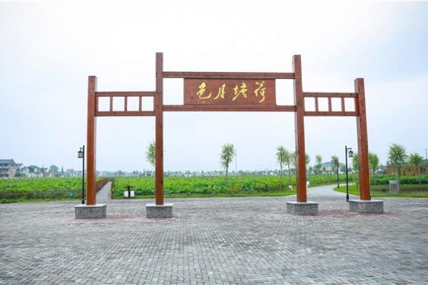 江苏一网红打卡点平园池•荷香民俗园景区,随手一拍就是美景