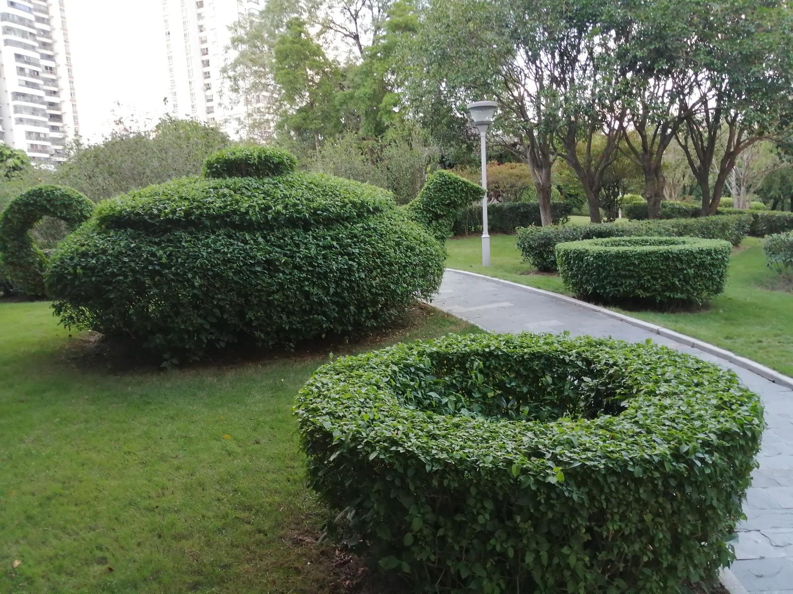 【美图Pick计划】南宁金花茶公园里形象逼真的绿植造型