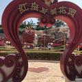 上海迪士尼乐园 - 双人票