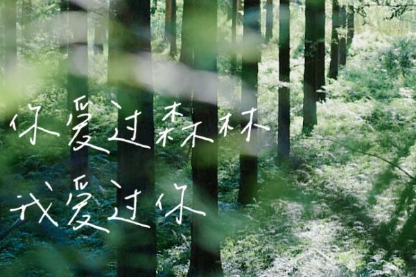 【美圖Pick計劃】秋日の鹽城,在風景中收獲最美的童話