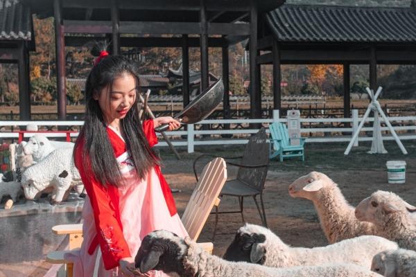 【美图Pick计划】很多人不知道,武汉也有看日出、看红叶的好去处,迷倒无数游客